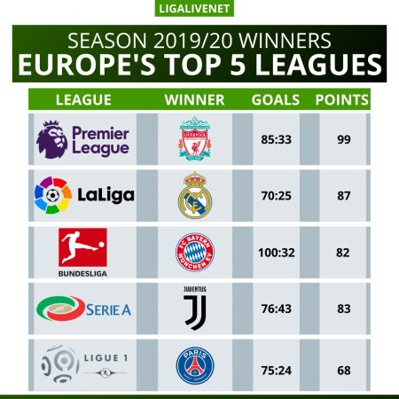 Top 5 europe's leagues winners